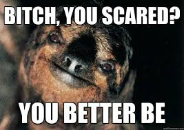Bitch, you scared? You better be - Stevethescarysloth - quickmeme via Relatably.com