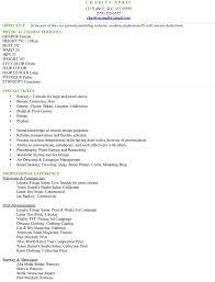 model resume example info modeling resume sample model of a resume television reporter