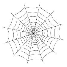 Small Picture The 25 best Spider web drawing ideas on Pinterest Black widow