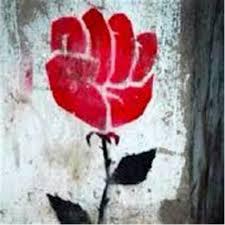 The Rose Garden Report