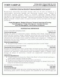 bank risk manager resume examples cv procurement manager ehigie risk management cv credit risk management resume sample risk management analyst resume sample risk management resume