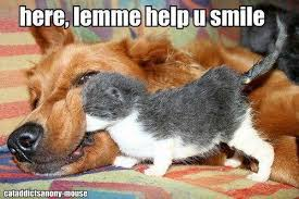 Here lemme help you smile | Funny Dirty Adult Jokes, Memes & Pictures via Relatably.com