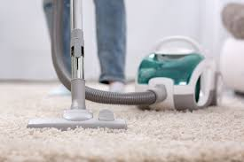 What Is a HEPA <b>Filter</b> and Do I Need One for My <b>Vacuum</b>?
