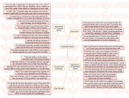 "insights mindmaps no first use nuclear weapons policy and insights mindmaps "" no first use nuclear weapons policy"" and ""yamanaka genes"""