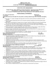 collection agent resume sample collections resume business analyst collections agent