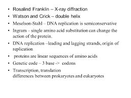 dna structure essay questions   essay structuredna replication essay questions and answers  rosalind franklin x ray diffraction watson and crick double helix meselson stahl