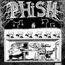 Junta album by Phish