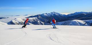 leadership matters ski rescue teams an example of teamwork we how good management saves lives on the ski slopes