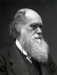 Charles Darwin Biography and factsBiography Online
