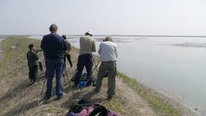 The <b>New</b> Zealand Birdwatchers Who Fly to North <b>Korea</b> in the <b>Spring</b>