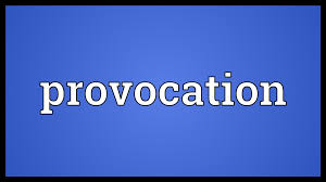 Image result for pictures of can you say provocation