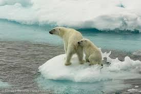 Resultado de imagen de imágenes de mujeres del ártico