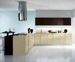 Contemporary Kitchen Cupboards Kitchen Units Designs Cabinets Modules Designs Small Kitchens