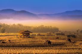 Pai Noord Thailand