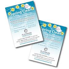bubblefrog flyers platinum cleaning solutions flyer