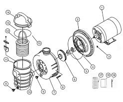 pentair pool pump wiring diagram pentair image pentair 3 hp pool pump pentair image about wiring diagram on pentair pool pump wiring