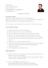resume objective examples translator com resume objective examples translator