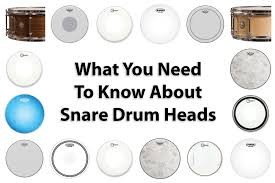 What You Need to Know About Snare <b>Drum Heads</b> - Modern ...