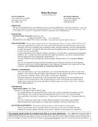 example resume no experience template example resume no experience