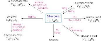 carbohydratesglucose