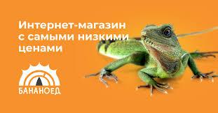 <b>Термометры</b> и гигрометры для <b>террариумов</b> в Москве ...