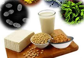 Imagini pentru probiotice