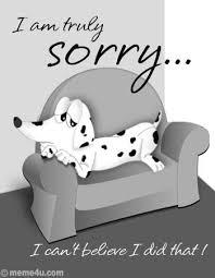 Hasil gambar untuk greeting card sorry friend