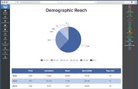 ppc report templates facebook reports