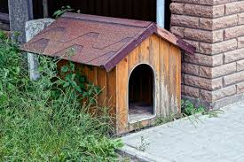 Getting Rid of Odors in an Outdoor <b>Kennel</b> | ThriftyFun