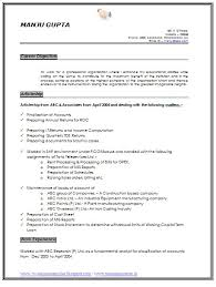 Executive Resume Samples   Professional Resume Samples Imagerackus Prepossessing Social Workers Resume And Resume Skills       instant resume templates