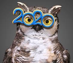 America's Best Contacts & Eyeglasses | Prescription Glasses ...