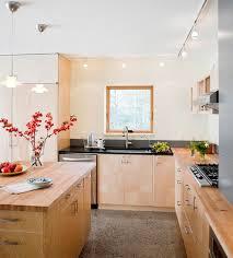 kitchen track lighting home interior design