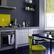 Lemon And Lime Kitchen Decor Lemon And Grey Kitchen Ideas Quicuacom