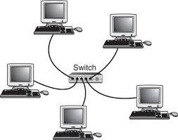 local area network  lan    allison royce of san antoniolocal area network  lan