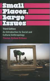 books by eriksen small places large issues introduction to social and cultural anthropology pluto 1995 2000 2010