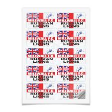 Наклейки прямоугольные 9×5 см Millwall Russian <b>Lions</b> stickers ...