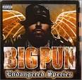 Wishful Thinking by Big Punisher