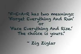 Fear quote Zig Ziglar | volleyball | Pinterest | Zig Ziglar, Fear ... via Relatably.com