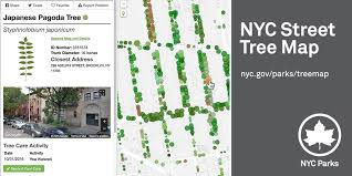 NYC Street <b>Tree</b> Map : NYC Parks