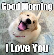 Good Morning Meme For Girlfriend | Tumblr Images via Relatably.com