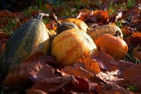 <b>Halloween</b> & <b>autumn break</b> in Sweden