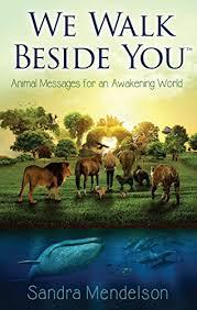 We <b>Walk Beside You</b>: Animal Messages For An Awakening World ...