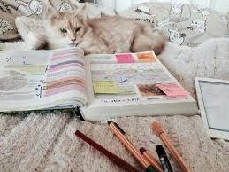 """Résultat de recherche d'images pour """"college notes cat"""""""