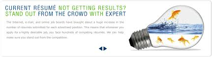 Online professional resume writing services seattle   reportz        FC
