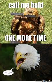 RMX] Eagles Are Self Conscious by somanylies - Meme Center via Relatably.com