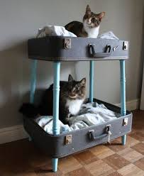 spoil your kitty 27 creative and cozy cat beds digsdigs cat lovers 27 diy solutions