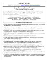 mro buyer resume procurement resume samples