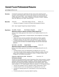 example of resume summaries template example of resume summaries