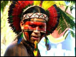 Image result for artesanato indigena brasileiro