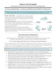digital marketing specialist resume sample digital marketing digital marketing executive resume sample
